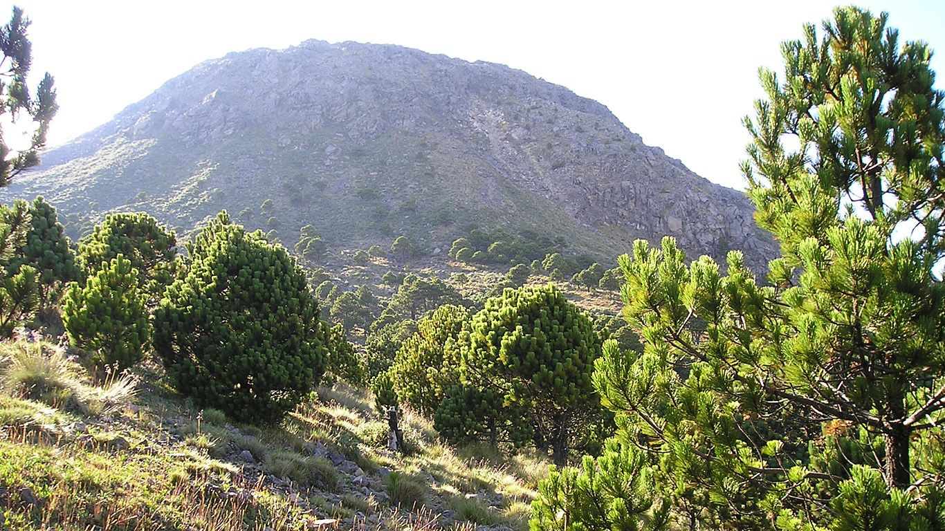 Пейзаж.Вулкан Тахумулько