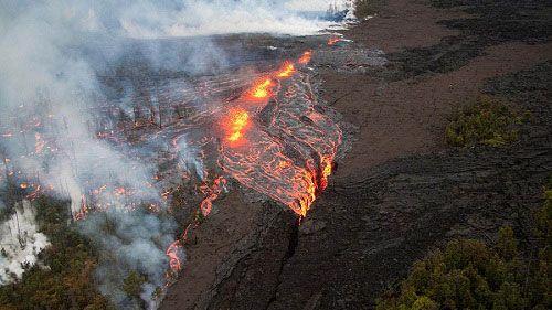 Вулкан Килауэа уничтожает лес